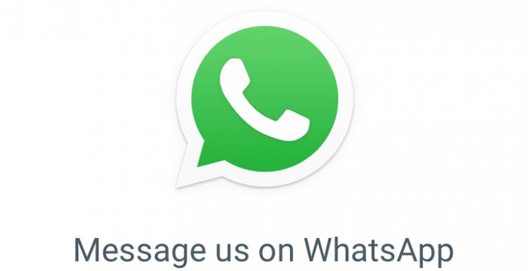 whatsApp logo - white phone in green circle