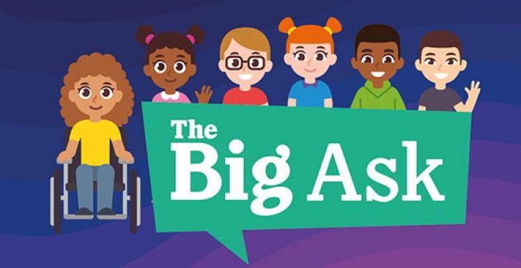 The Big Ask survey